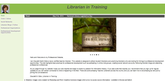 Librarian in training website